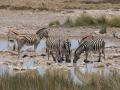 Namibie - Botswana - Zimbabwe